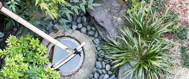 むつき庵の庭